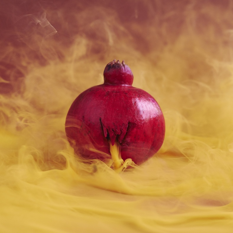 10-pomegranate_1527