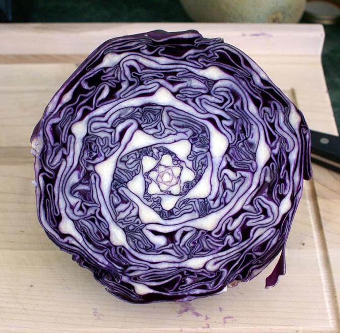 fractal-cabbage_670