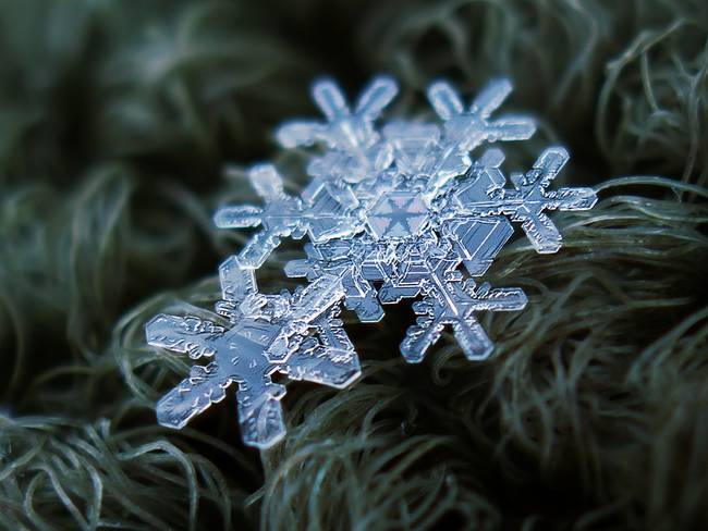 snow11-650x0_q70_crop-smart