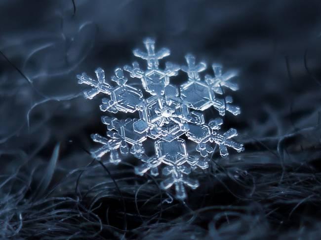 snow12-650x0_q70_crop-smart