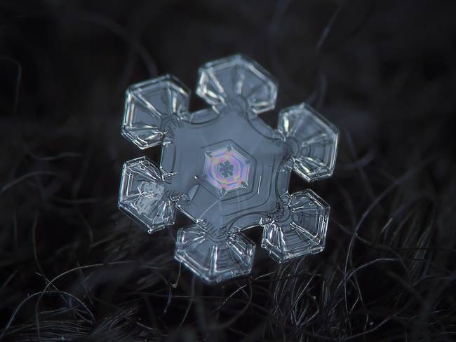 snow14-650x0_q70_crop-smart