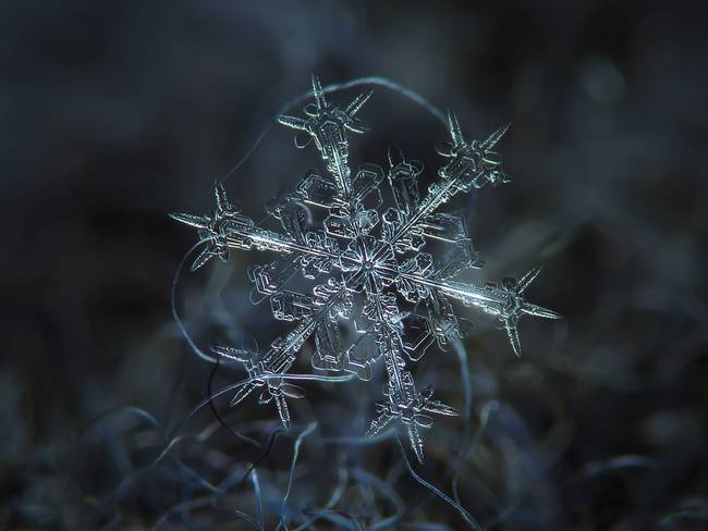 snow2-650x0_q70_crop-smart
