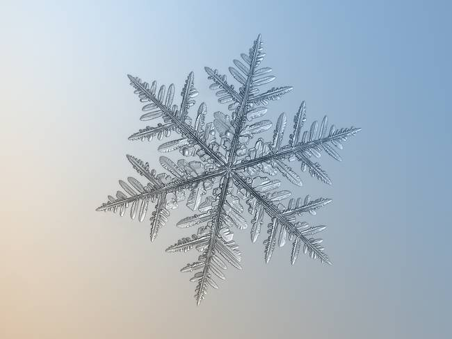 snow3-650x0_q70_crop-smart