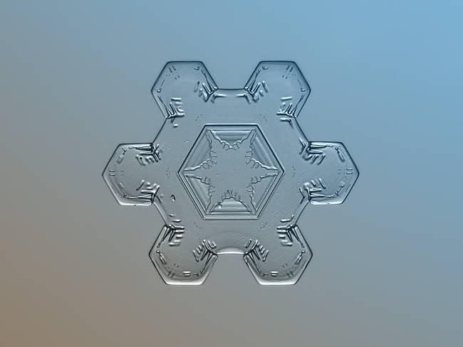 snow4-650x0_q70_crop-smart