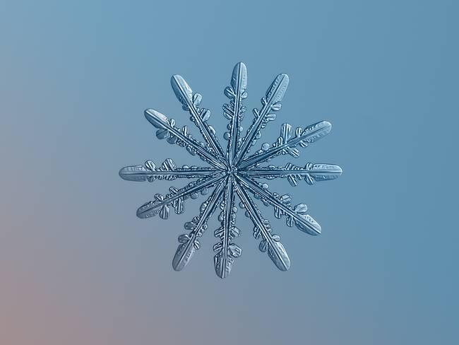 snow6-650x0_q70_crop-smart
