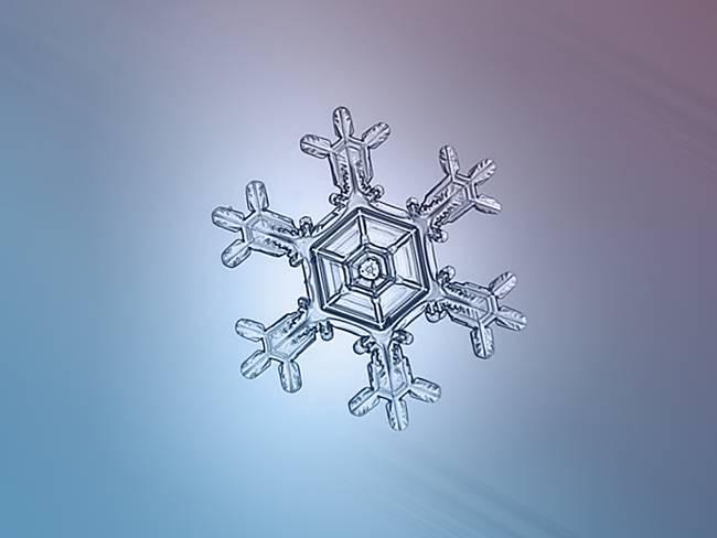 snow8-650x0_q70_crop-smart