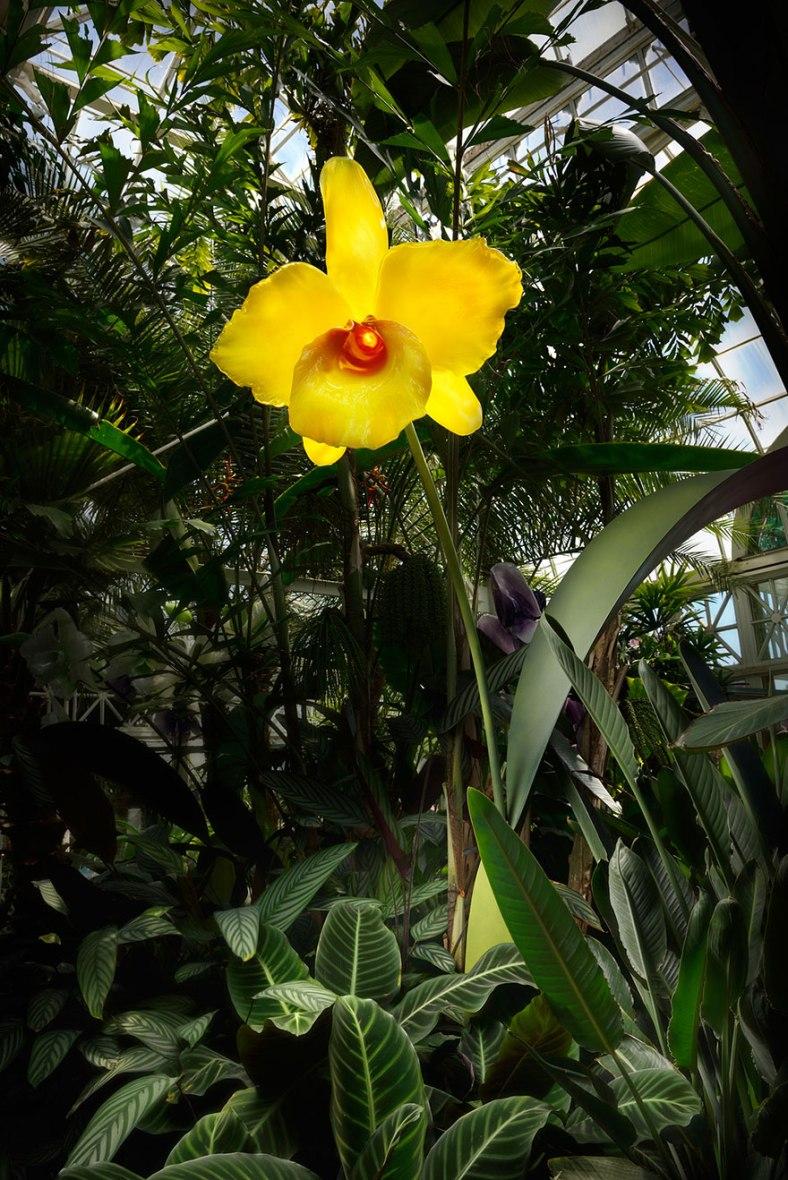 glass-flowers-jason-gamrath-16__880