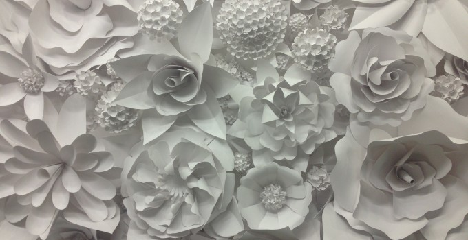 3D Paper Flower Wonder Wall Collection And Sculptures | Art Exists Because  Life Is Not Enough.
