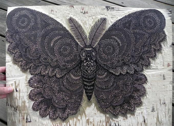 moth-2-680x491