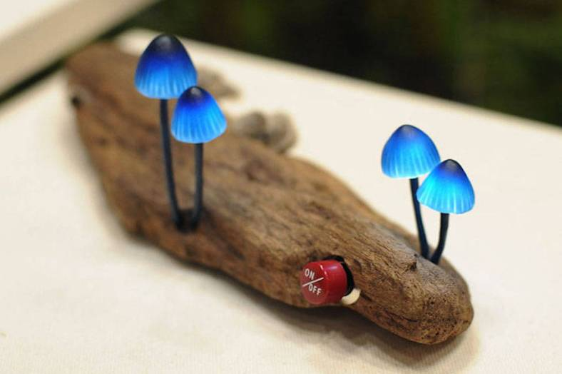 mushroomled-2-900x599