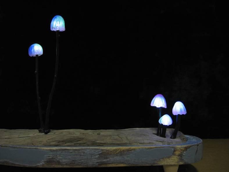 mushroomled-8-900x675