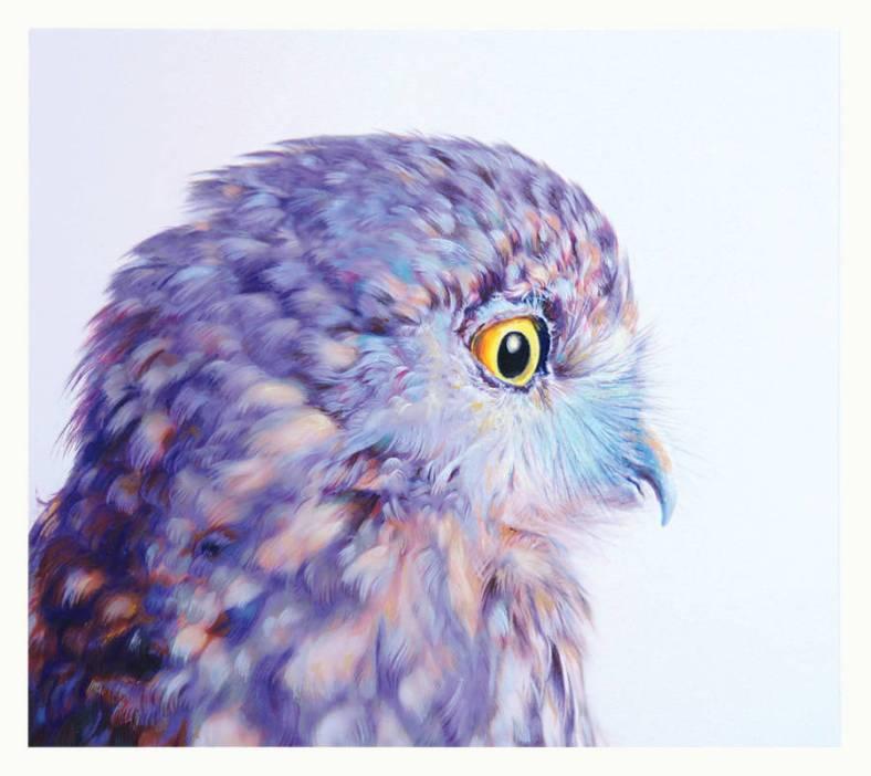 owl-16-900x802
