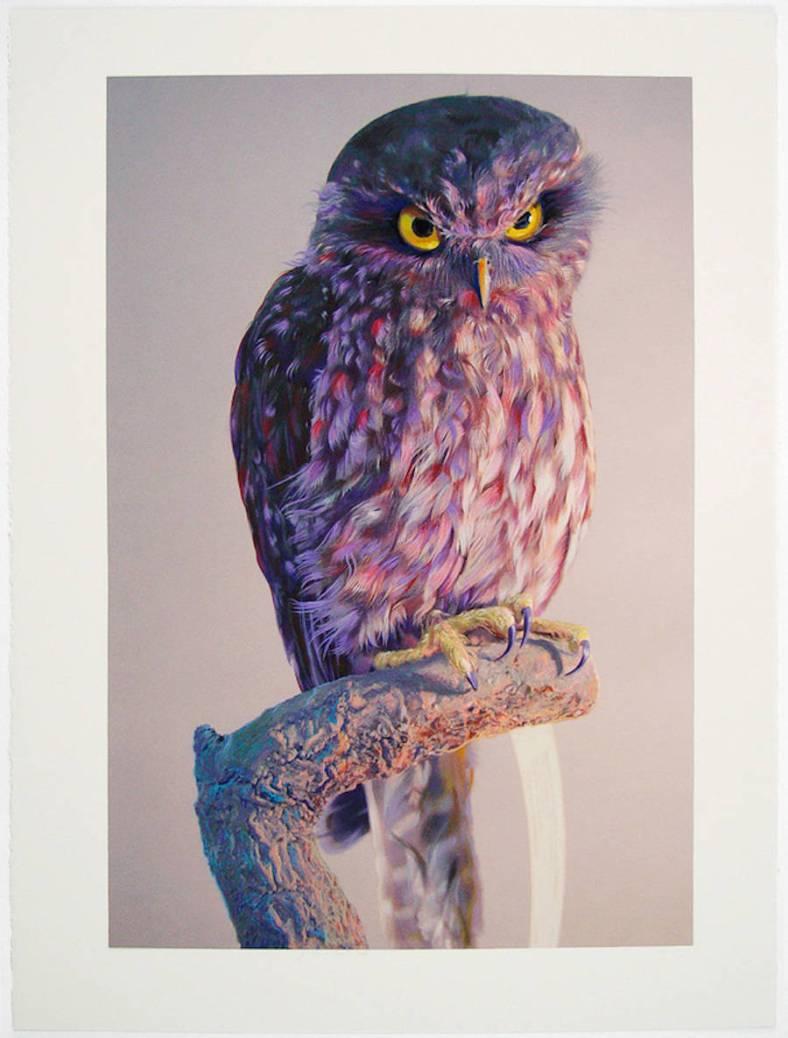 owl-2-900x1186