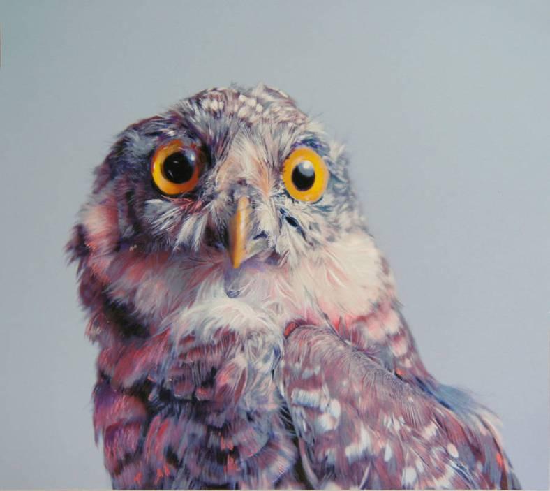 owl-3-900x804