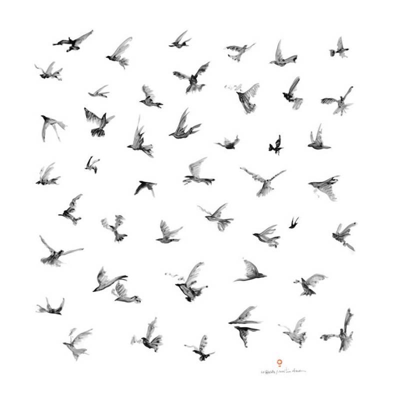 poeticbirdsscarves-6-900x900