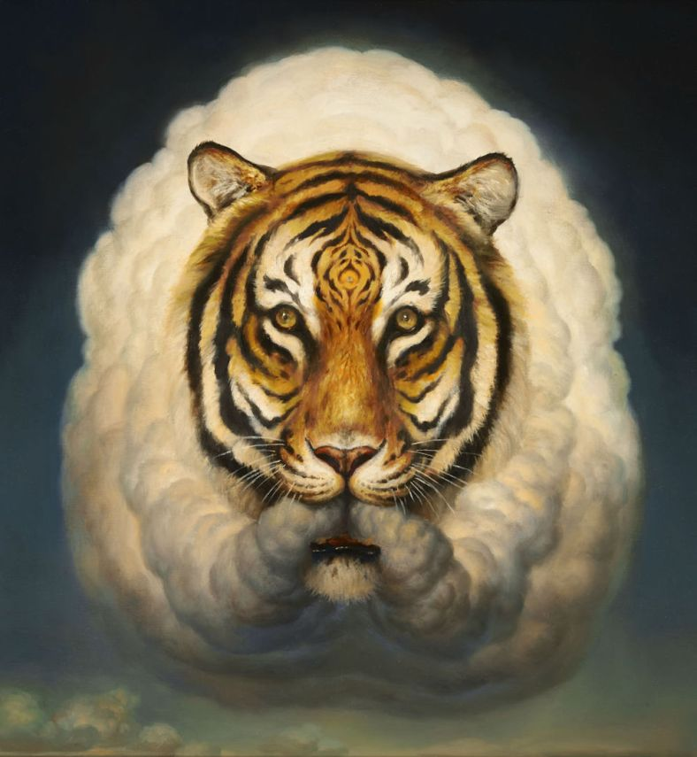 wittfooth_02
