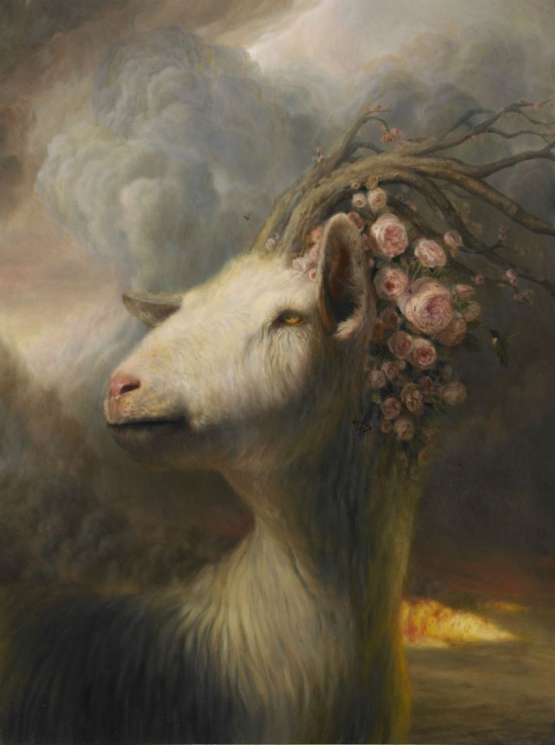 wittfooth_05
