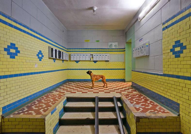 amusingsurrealphotographsofrussia-4-900x632