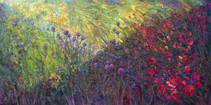 fields-of-bloom-680x339