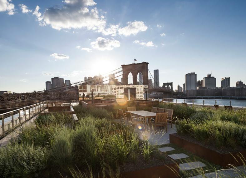 rooftop-meadow_180216_01