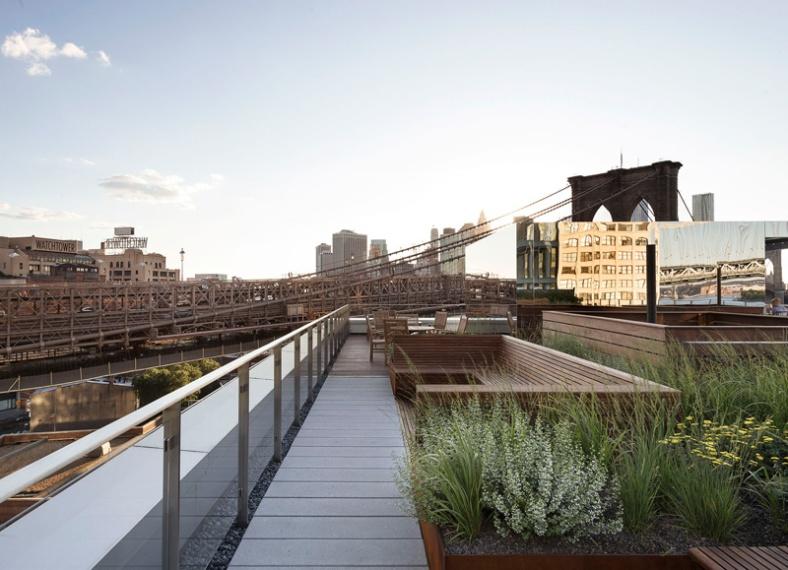 rooftop-meadow_180216_06