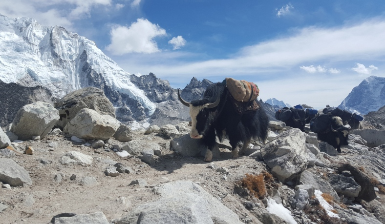 Final Approach to Everest Base Camp