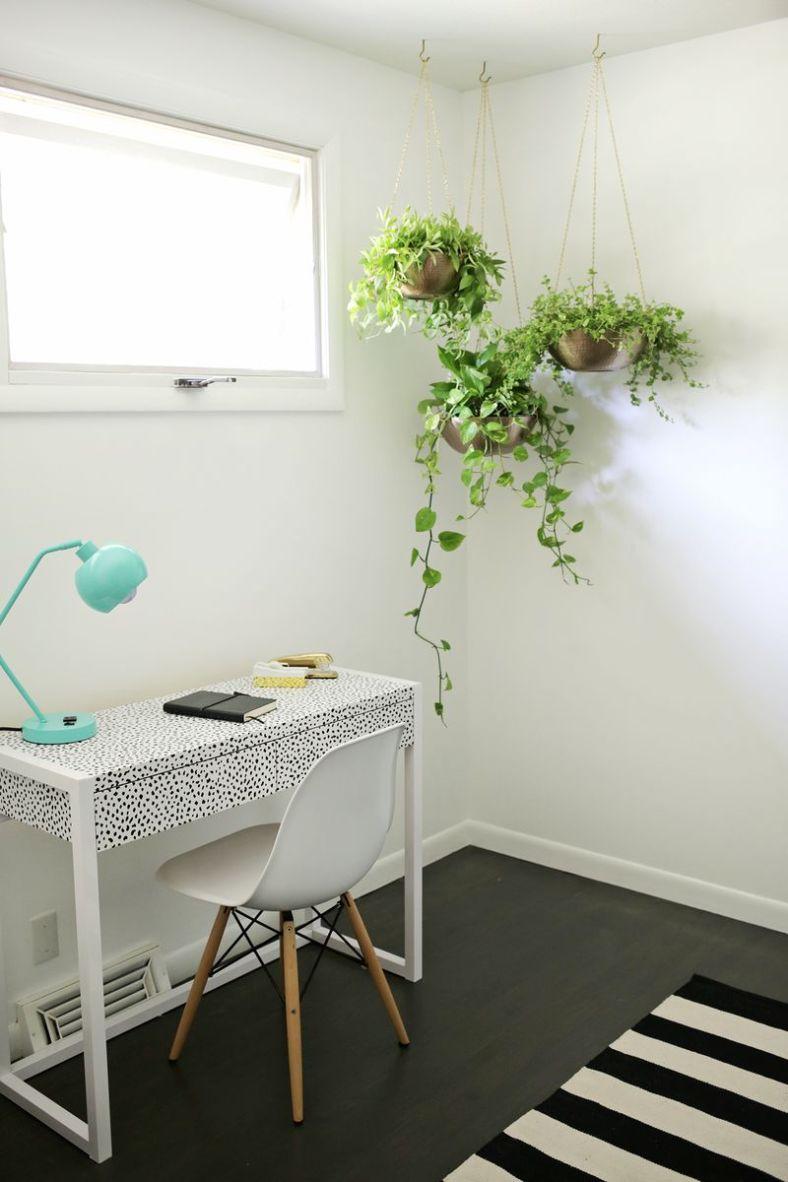 spring-decor-indoor-vines-160117-1037-03