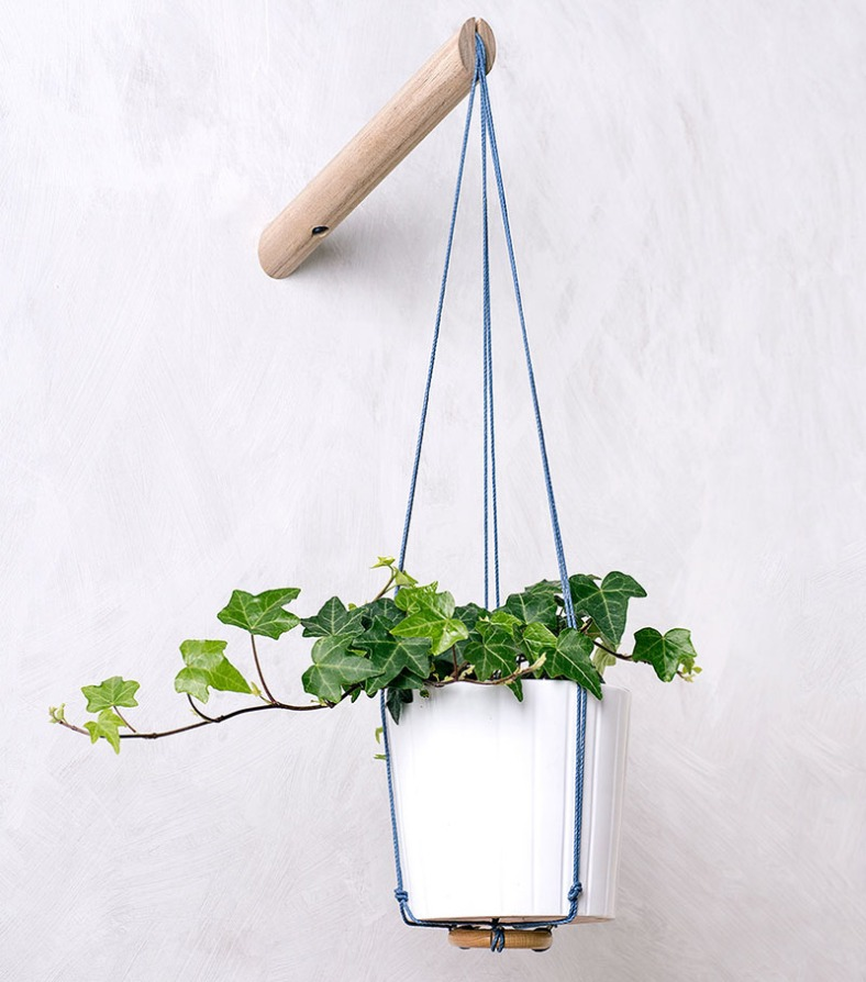 spring-decor-indoor-vines-160117-1037-04